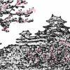 姫路城の桜の見ごろ │ 姫路城の桜の開花情報