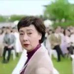 中国のアウディのCM非難集中で放送中止